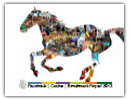 2013 - 2014 Racetrack Casino Benchmark Report Report PDF