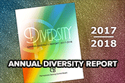2017 2018 annual diversity report